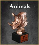 Wild Animal Trophies